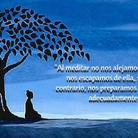 -Al meditar no nos alejamos de la sociedad, no nos escapamos de ella, sino muy por el contrario, nos preparamos para reincertarnos adecuadamente en ella-