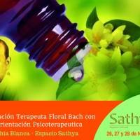 formacion-terapeuta-floral-bach-con-orientacion-psicoterapeutica-2